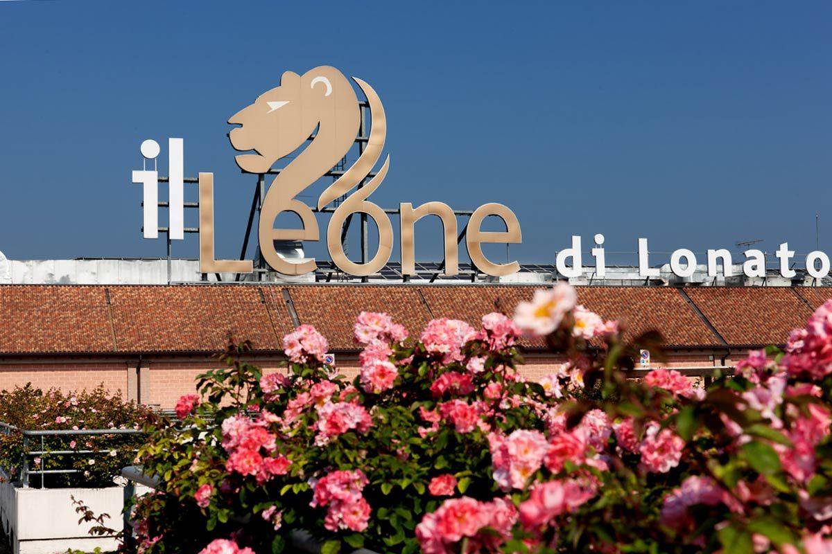 bieten eine große Auswahl an am besten wählen suchen Un Leone… amico di Fido – Gardapost