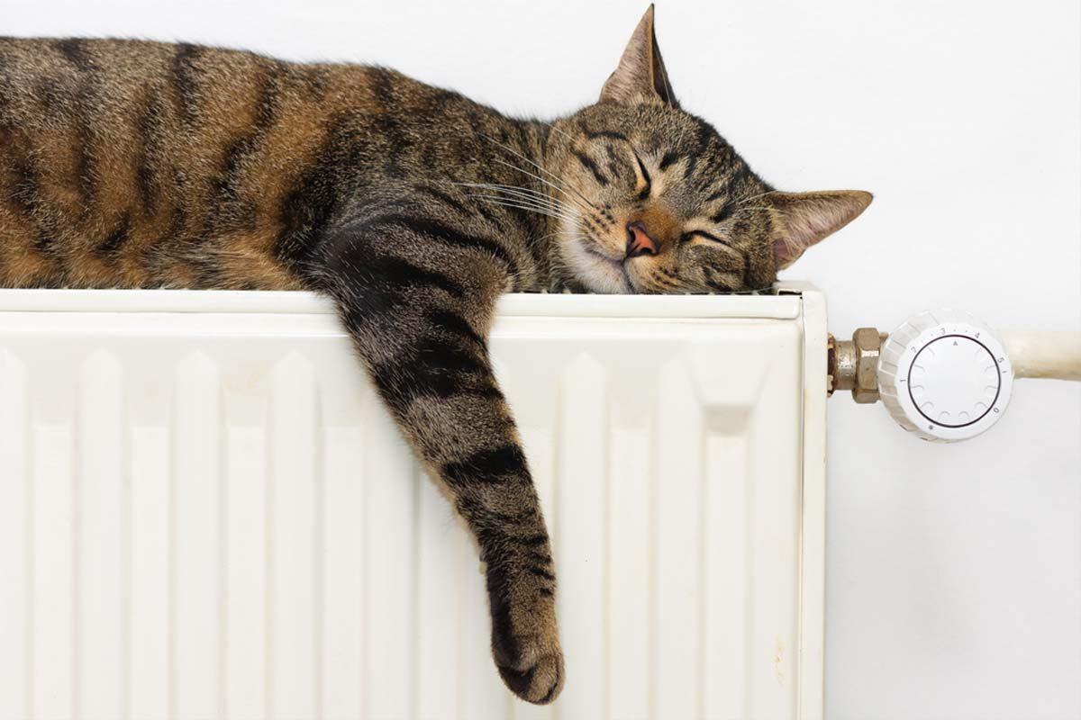 Proroga di accensione degli impianti termici