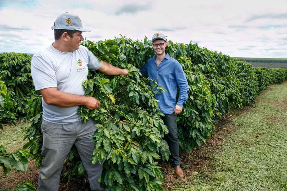 Parla bresciano il miglior caffè del Brasile