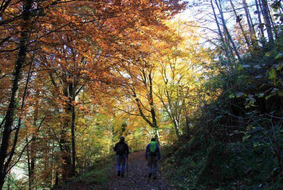 Cinque cose da fare in autunno sul Garda