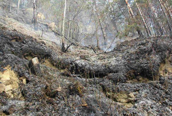 Tremosine: incendio sotto controllo, ora la conta dei danni
