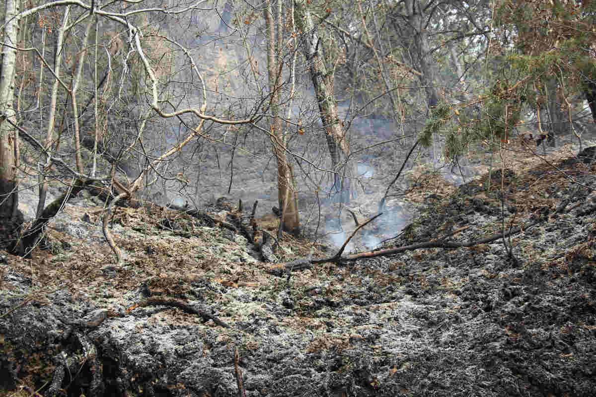 L'Alto Garda continua a bruciare. In cenere il SIC Corno della Marogna