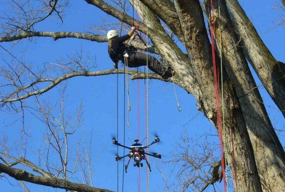 Droni e agricoltura: esperienze formative e applicazioni tecniche
